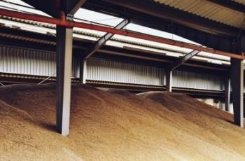 Platforma Żywnościowa działa zgodnie z planem.