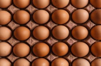 Ukraińskie jaja klasy A wchodzą na rynek unijny
