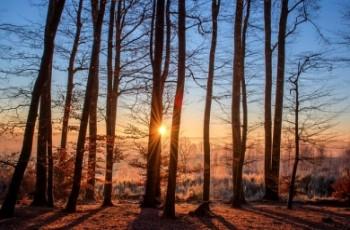Zmiany w Regionalnych Dyrekcjach Ochrony Środowiska -